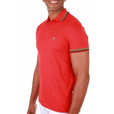 Bon plan, codes promo, réduction Guadeloupe, Martinique, Guyane, la Réunion : Polos basic 18 coloris disponibles | photo-polos-basic-18-coloris-disponibles-1